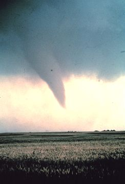 Tornado at beginning of life - NOAA.jpg