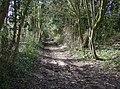 Track near Cowdown Farm - geograph.org.uk - 354024.jpg