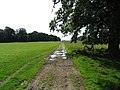 Track through Stapleford Park - geograph.org.uk - 934964.jpg