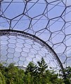 Tropical biodome 2 - geograph.org.uk - 40963.jpg