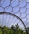 Tropical biodome 2 - geograph.org.uk - 40963.jpg