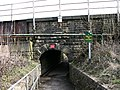 Tunnel under ELR - geograph.org.uk - 378269.jpg