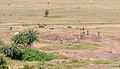 U.S. and Indian army units converge on a target during Yudh Abhyas 2009.jpg
