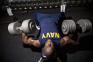 Muscle memory - Image: US Navy 071017 N 0995C 008 Chief Mineman Kevin Sperling, an officer recruiter at Navy Recruiting Processing Station Honolulu, presses two 105 pound dumbbells