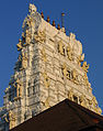 Udupi - Scenes of Sri Krishna Temple7.jpg
