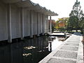 United States National Arboretum 3.JPG