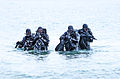 United States Navy SEALs 523.jpg