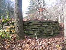 A rough stone wall, made of several courses of flat stones in concrete, in an overgrown area with a tree trunk