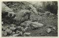 Utgrävningar i Teotihuacan (1932) - SMVK - 0307.f.0073.tif