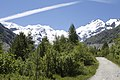 Vadret da Morteratsch - panoramio (46).jpg