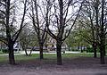 Vaksali park, Tartu.JPG