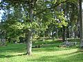 Vecokras kapi, Andrupenes pagasts, Dagdas novads, Latvia - panoramio.jpg