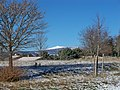 Ventoux, vue de St Tinit.JPG
