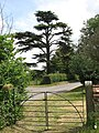 View across Yarmouth Road from the churchyard gate - geograph.org.uk - 1342837.jpg