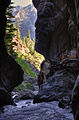 View from inside the canyon (6309679510).jpg