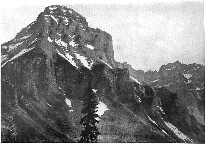 View of Mount Huber, showing the erosion of the massive cambrian limestones.jpg