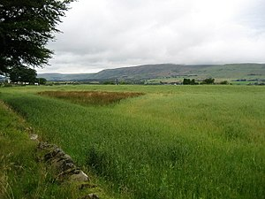 Auchendavy - Image: View of the Campsie Fells geograph.org.uk 1459454
