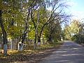 Village Bikovo 8.JPG
