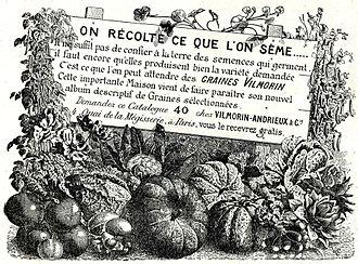 Vilmorin - Advertisement in Le Miroir (1914)