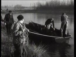 Bestand:Vissen met de zegen in de vijvers van het bosplan-PGM4012019.webm