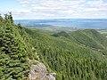 Vu vers l'Est, au sommet du Mont Saint-Joseph à Carleton-sur-Mer - panoramio.jpg