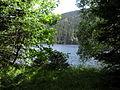 Vylet k Cernemu jezeru Sumava - 9.srpna 2010 218.JPG