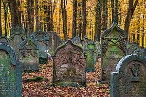 Waibstadt - Jüdischer Friedhof - ältester Teil - Grabsteine im Herbstlaub.jpg
