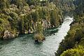 Waikato River (7580080860).jpg