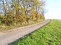 Wanderweg 22 nach Sevenig (Our) - geo.hlipp.de - 6815.jpg
