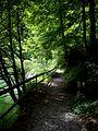 Wanderweg am Schwarzenbach-Stausee - panoramio.jpg