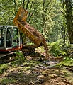 Warwickslade Cutting, infilling of minor drain - geograph.org.uk - 1464096.jpg