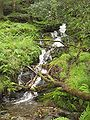 Waterfall at a trail through Wicklow Mountain Nationalpark.jpg