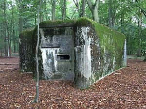 K-W Line - Pillbox at Wavre, allowing enfilading fire