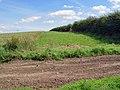 Westfield Farm Lands - geograph.org.uk - 891678.jpg