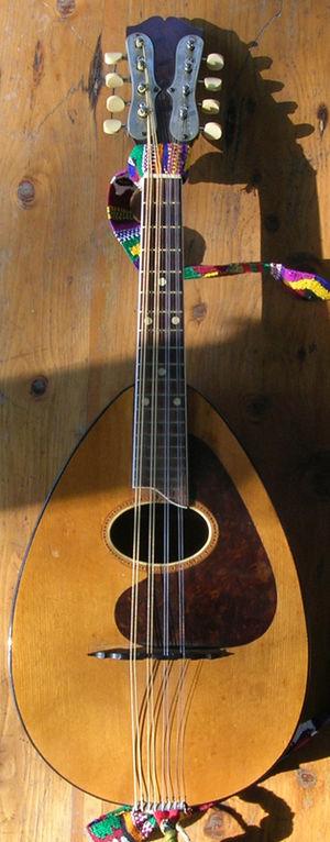Mandolute - A Weymann mandolute from the 1920s or 1930s.