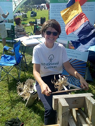 Beacon Hill, Leicestershire - Image: Whistlewood at beacon hill country fair