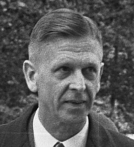 Willem den Toom in 1967