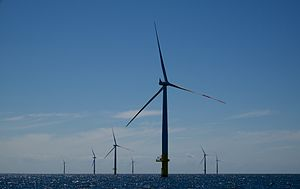Der Windpark EnBW Baltic 1