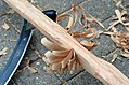 Wooden bow grip making - first side.jpg