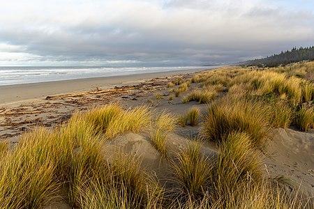 Woodend Beach, Canterbury, New Zealand