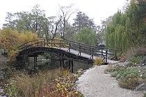 Wroclaw OgrodBotaniczny mostek.jpg