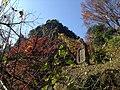 Yabakeimachi Oaza Shinyaba, Nakatsu, Oita Prefecture 871-0422, Japan - panoramio (17).jpg