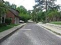 Yancy Avenue in Huntington.jpg