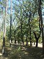 Yerevan Botanical Garden 1n (22).jpg