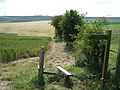 Yorkshire Wolds Way footpath - geograph.org.uk - 1385724.jpg