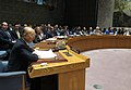 Yukiya Amano briefs UN Security Council (01814280) (40597337423).jpg