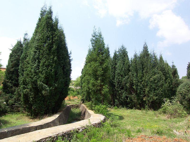 File:Zhaoyang, Zhaotong, Yunnan, China - panoramio - hilloo (17).jpg