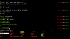 Screenshot di Zsh