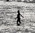 (1)North Bondi Beach-2.jpg