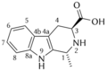 (1R, 3S)-1-methyltetrahydro-carboline-3-carboxylic acid.png